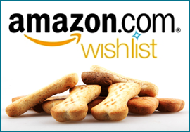 amazon-wishlist